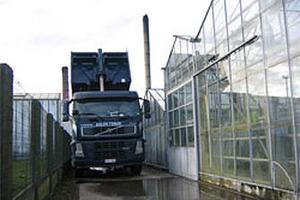 Kolen Tomar  - Brugge - Industrie & Tuinbouw