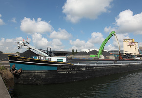 Kolen Tomar  - Brugge - commerce de gros
